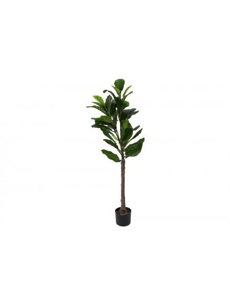 Искусственные растения Фикус лирата MK-7407-FC 0х0х120 см Темно-зеленый