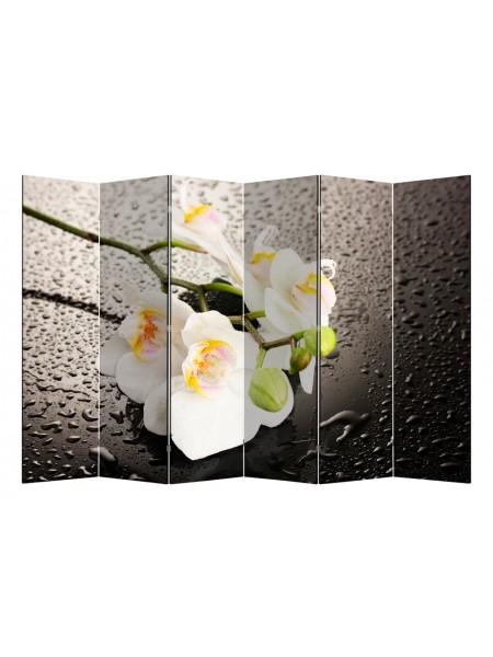 """Ширма 1111-6 """"Белая орхидея и капли"""" (6 панелей)"""