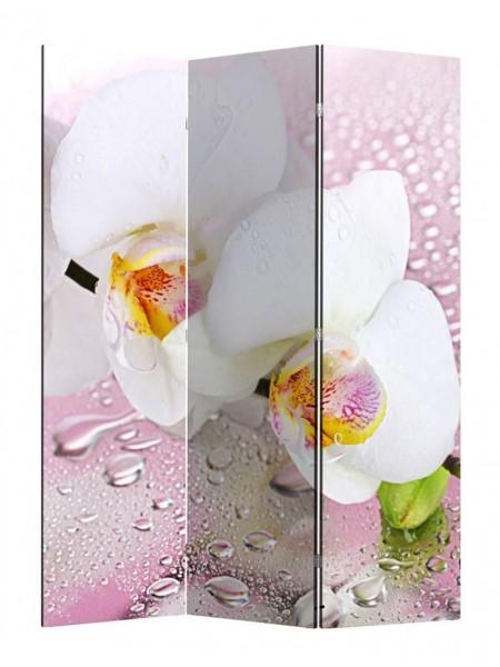 """Ширма 1101-3 """"Орхидея"""" (3 панели)"""