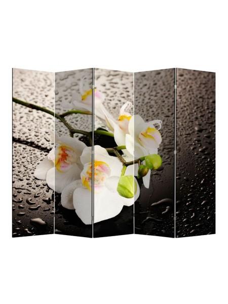 """Ширма 1111-5 """"Белая орхидея и капли"""" (5 панелей)"""